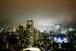 + The Night Lights of Tokyo + by brianyw