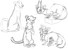 Sketches cats by Mimi-fox