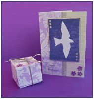 Swallow Birthday Card and Box by Sarahorsomeone