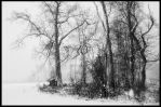 The Final Snow pt. 3 by PinEyedGirl