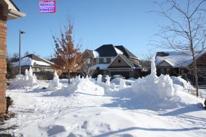 Early March Snow Garden by KeswickPinhead