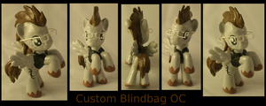 Custom OC Professor Blindbag by Gryphyn-Bloodheart