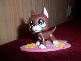 LPS Surfing by LeoPaw