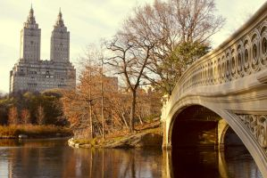 Central Park in Autumn by editordistriktmag