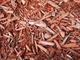 Red Woodchips by RosalineStock