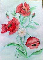 Red poppies by MadImaginaton