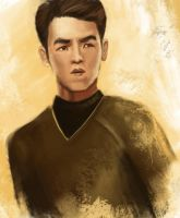 Sulu by swedeenicedtea