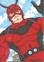 Giant Man- Current Costume sketch card by chicagogeekdad