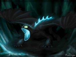 Toothless - the final battle by MeerDragon