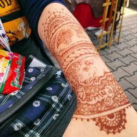 Guinea pig henna by cydienne