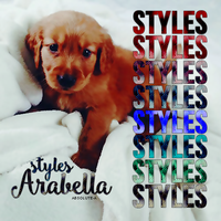 Arabella -Styles by Absolute-A