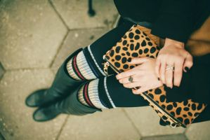 Leopard, Sock and Stripes II by SequinXHale
