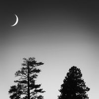 Bryce Canyon Moonlight by Durdenyr