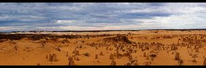 Pinnacles Panorama by TVD-Photography