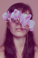 Orchid.00 by L1ly-R0s3