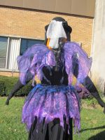 Zuccia Pumpkinhead 2015 - Back View 2 by Windthin