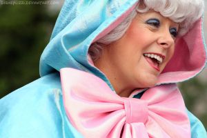 Fairy Godmother 02 by DisneyLizzi