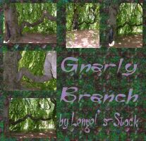 Gnarly Branch Pack by Lengels-Stock