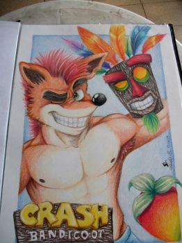 crash and aku aku by paulo228123