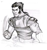 Wolverine by DJLogan