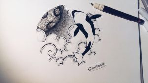 flying orca by Strohhuthexe