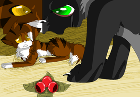 Hollyleaf: You see those Deathberries? by xXTwistedRainbows