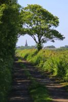 Distant spire by Cantabrigian