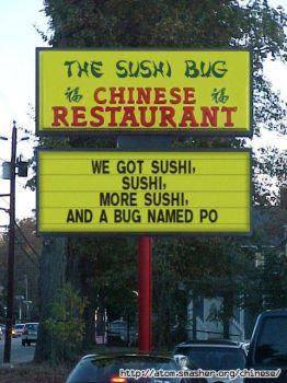 The Sushi Bug by 100PERCENTFAN