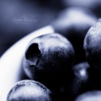 blueberryblack by Blueberryblack
