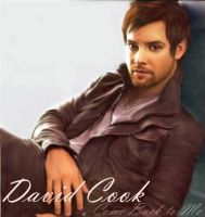 David Cook VVI by ChickenChasser