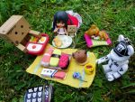 First picnic of the year by Hiromi-Sakakibara