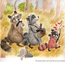 Raccoon March by Coloran