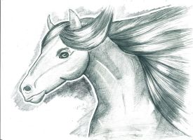 Horse sketch with a bit of blue by Visjel