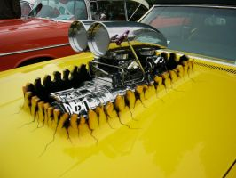 1967 Olds 442 power bulge by RoadTripDog