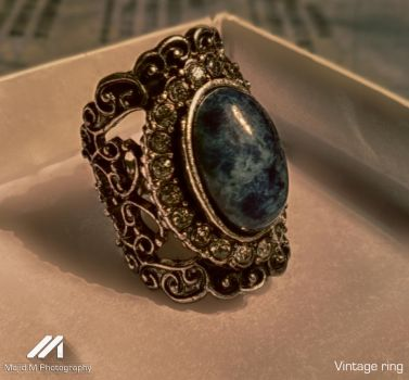 Vintage Ring by meanart