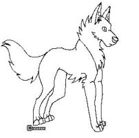 Canine lineart by neomon