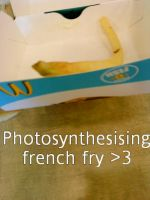 PHOTOSYNTHESISING FRENCH FRY by emokiss-ringingbell