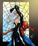 Blackcat and Spidey pin up C by VOLT-reborn
