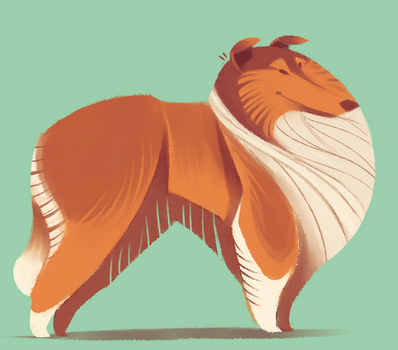 Collie by Canvascope