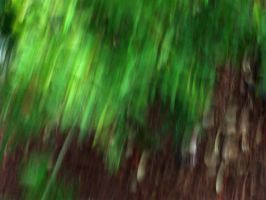 foresty blur by shyfoxling