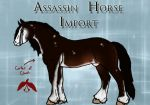 Assasin Horse Import: 2013 Special Import #3 by PrimalInstincts