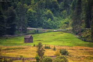 Picturesque Romania by AlecsPS