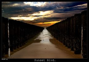 Sunset Blvd. by RoieG