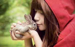 Little Red cape and Bunny 3 by jeanne10