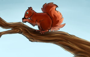 Squirrel by Aiyana-Kopa