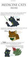 Medicine cat meme by CYcat