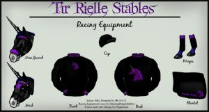 Stable Colors Racing Equipment by pegacorna2