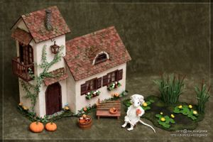 A tiny house for Manuna Mouse - 01 by scargeear