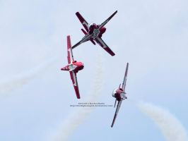 Snowbirds 4 Way Cross by 8TwilightAngel8