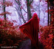 The Masque of the Red Death by lady-amarillis